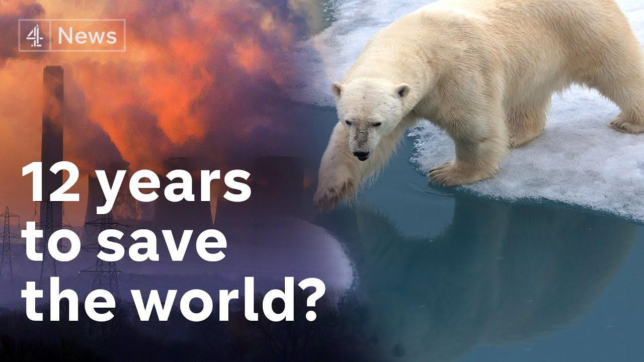 Scientists Warn Of Imminent Climate Catastrophe Without Massive Changes