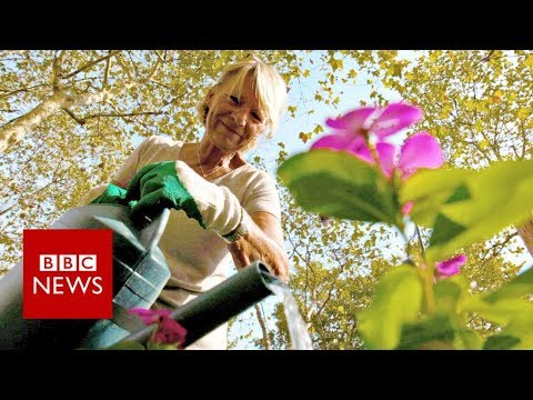 The City Turning Streets Into Gardens – BBC News